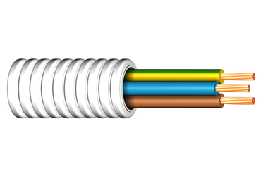 Image of RQ 450/750 V cable